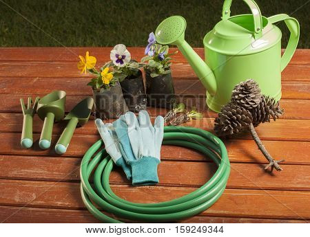 gardening tools in the garden on the grass