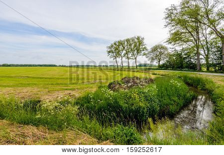 Polder landscape in the Netherlands in springtime with trees reflecting in the mirror smooth water surface of a curved small stream.