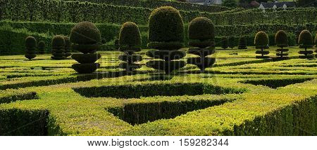 Ornamental Gardens Near Castle Of Villandry, France