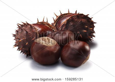 Horse Chestnuts, Clipping Paths