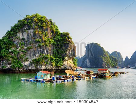 Floating Fishing Village In The Ha Long Bay. Vietnam