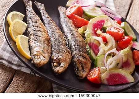 Mediterranean Cuisine: Grilled Sardines With Fresh Vegetable Salad Close-up. Horizontal