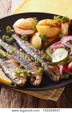 Grilled Sardines With Roasted Potatoes And Fresh Vegetable Salad Close-up. Vertical
