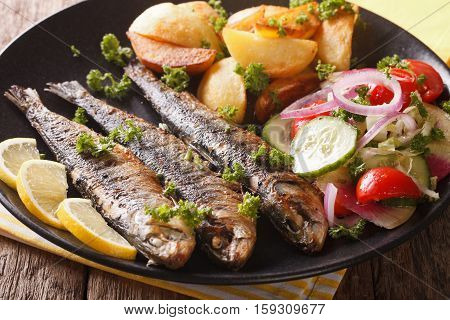 Fried Sardines With Potatoes And Fresh Vegetable Salad Close-up. Horizontal