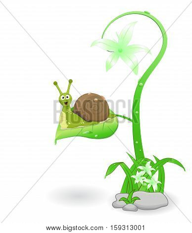 cute cartoon snail smiling above leaf on white background