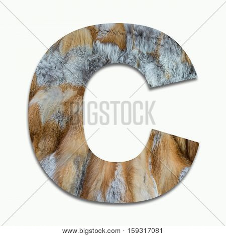 C red fox fur in a font trained