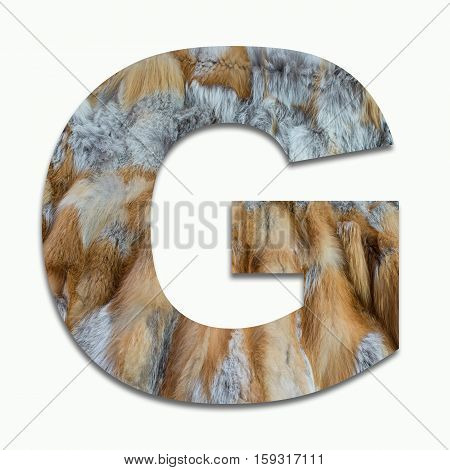 G red fox fur in a font trained