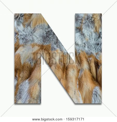 N red fox fur in a font trained