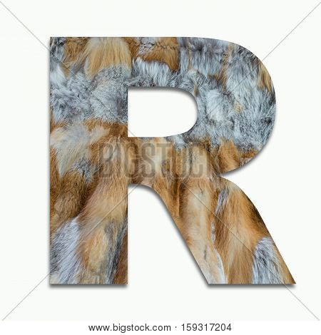R red fox fur in a font trained