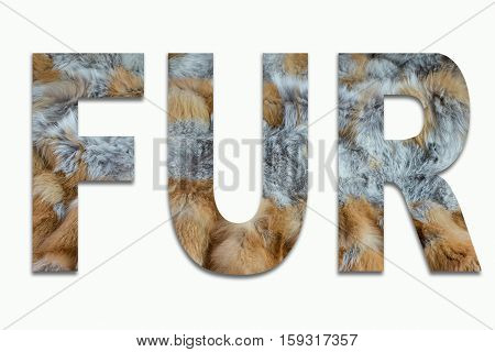 FUR red fox fur in a font trained