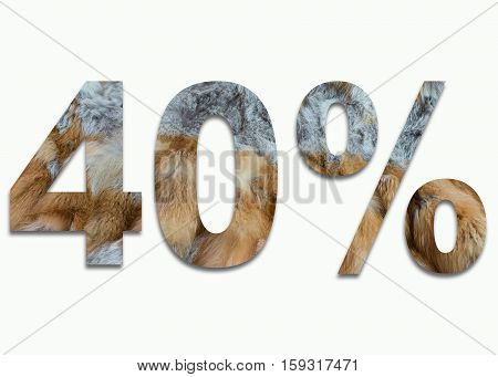 40% red fox fur in a font trained