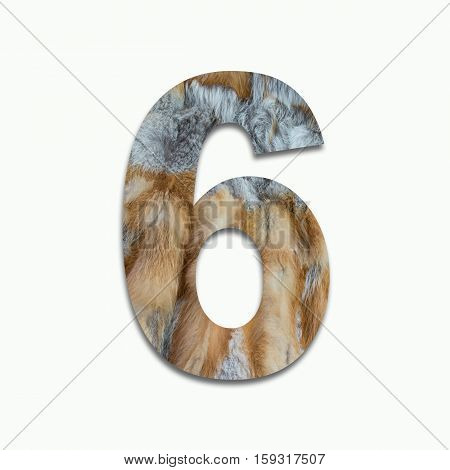 6 red fox fur in a font trained