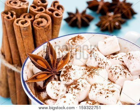 Cup Of Hot Cocoa With Marshmallow Close Up