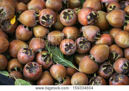 Bunch of raw medlar fruits background. Healthy food.