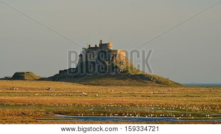 Lindisfarne Castle stands alone. On a prominent volcanic basalt position the ancient defences on Holy Island, Northumberland, UK,  once attracted attacked from raiding Vikings