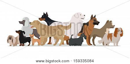 Group of different breeds dogs stand on white background. Dogs banner with space for text. Vector illustration in flat style. Cartoon dog character, pet animal