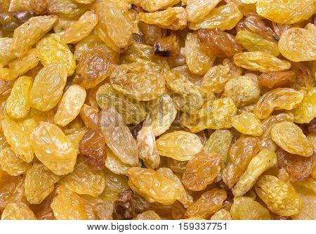 Background dried raisin grapes closeup shot Fruits