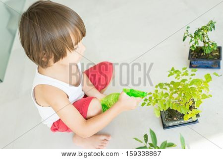 Kid holding plant growing organic herbs for cooking at home healthy lifestyle