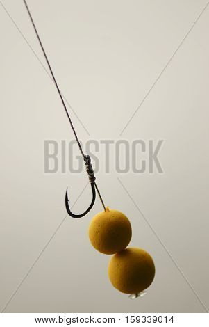 Fishing Rig Pop Up In Bait