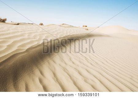empty desert with blue sky under sunshine