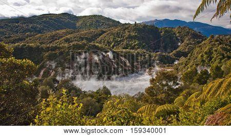 Waimangu valley volcanic area in New Zealand