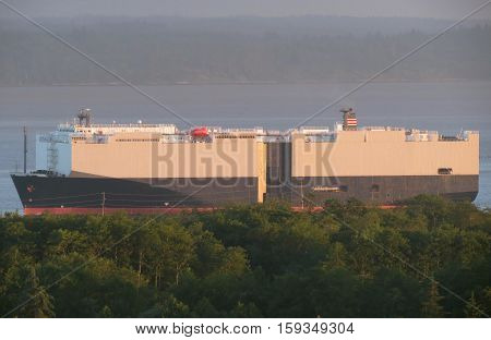 Massive cargo vessel and automobile carrier slips past the harbor shoreline on its way to the port.