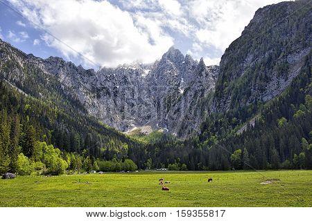 Scharitzkehl valley above the Berchtesgaden valley and the Koenigsee.