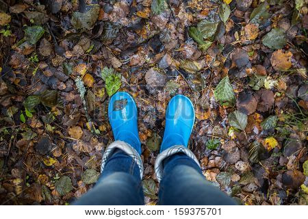 Woman legs in blue gumboots against autumn leaves background. Fall in the forest.