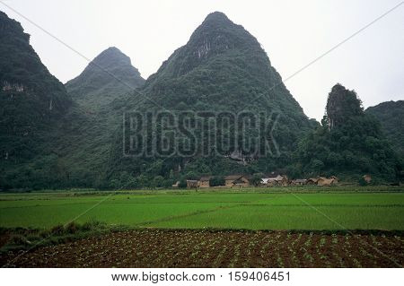 A small farming village, with rice paddies and vegetable gardens, beneath mountain karsts near Yangshuo, China, circa 1987.