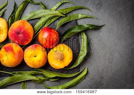 Fresh peaches with fresh leaves on black stone slate plate on gray stone slate background. Summer peaches top view, copy space