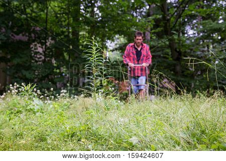 Man cutting an unruly thick yard full of weeds at the cottage with a rusty old lawnmower.