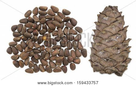 Unpeeled cedar nuts with cone isolated on white background.