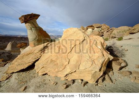 Eroded sandstone rock and hoodoo in Stud Horse Point