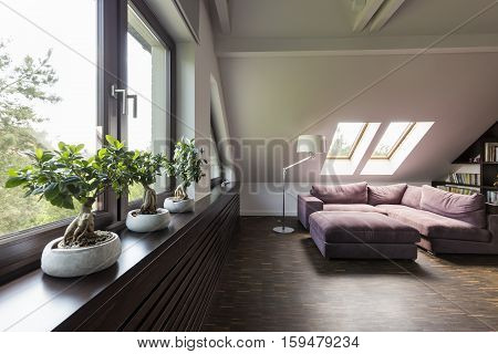 Attic Lounge Room With Couch