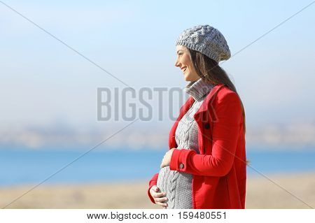 Side view portrait of a happy pregnant woman taking a walk on the beach in a sunny winter day