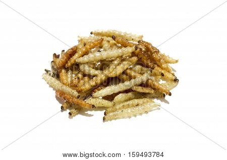 Fried caterpillars larvae on a white background