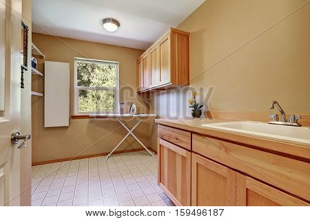 Laundry Room Interior With Vanity Cabinet