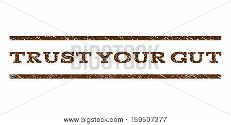 Trust Your Gut watermark stamp. Text caption between horizontal parallel lines with grunge design style. Rubber seal brown stamp with unclean texture. Vector ink imprint on a white background.