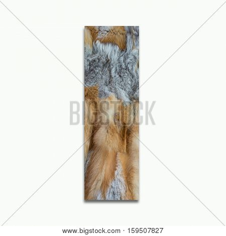 I red fox fur in a font trained