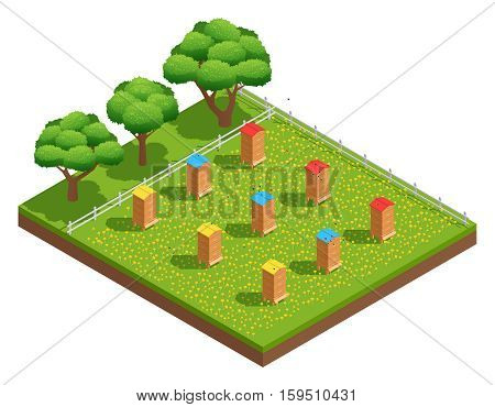 Beekeeping apiary with wooden hives on grass with flowers near trees isometric composition vector illustration