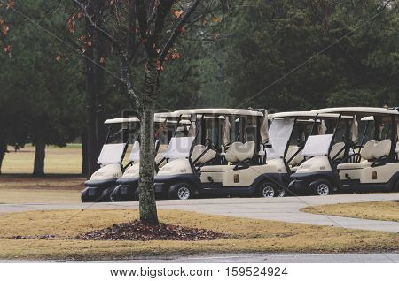 Golf Carts Lined Up On The Course Ready To Go, With Tree