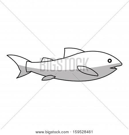 Fish icon. Sea life ecosystem fauna and ocean theme. Isolated design. Vector illustration