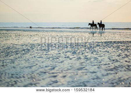 Couple On A Pair Of Horses In Deauville, France