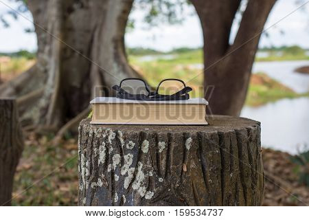 Books with glasses resting on a bench in the park.