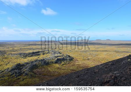 Landscape covered in lava rock with moss growing all over it.