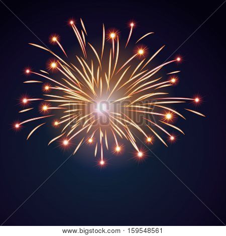 Firework Bursting Sparkle Background