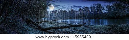 Mountain River With Fallen Tree On The Shore At Night