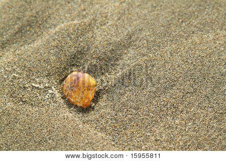 Stone On Sand