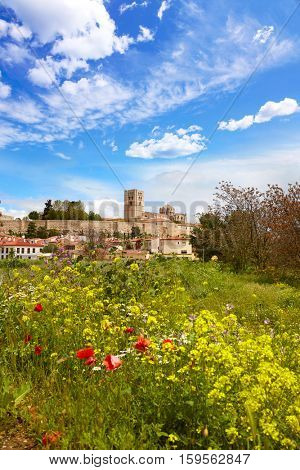Zamora spring field skyline Spain on the Via de la Plata way to Santiago