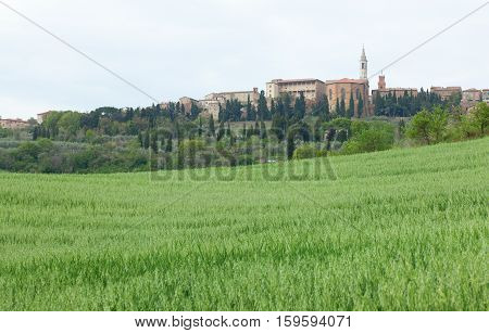 Town Of Pienza And Beautiful Tuscan Fields